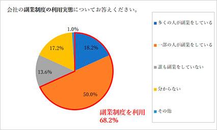 副業利用実態円グラフ
