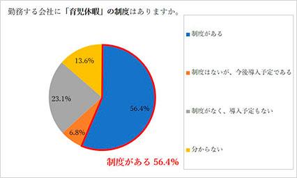 育児休暇制度円グラフ