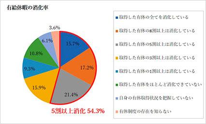 有給休暇消化率円グラフ